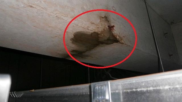 下関の老人ホームでの雨漏り点検